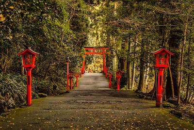 The Lantern Path